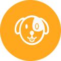 operaciones-veterinario-bilbao
